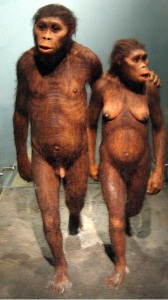 Hominid couple